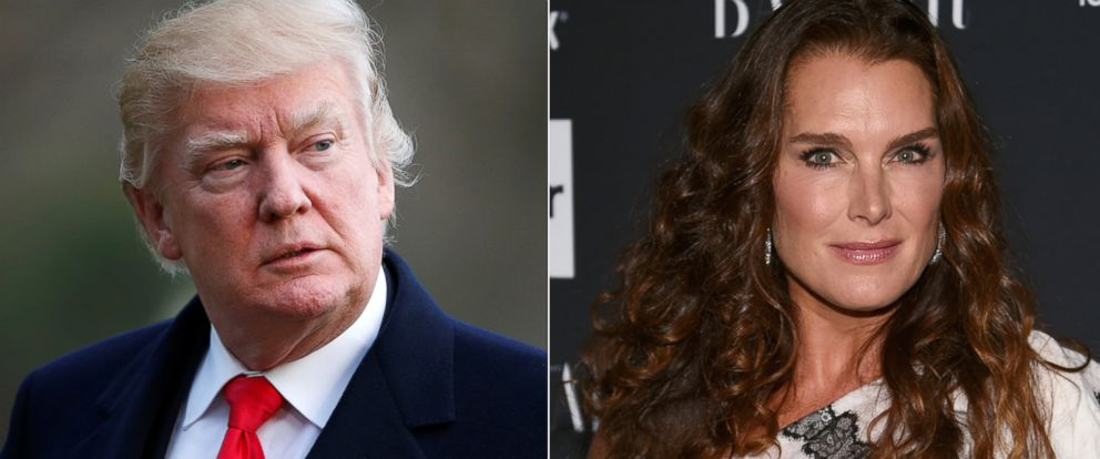 PHOTO: Pictured (L-R) are President Donald Trump in Washington, D.C., March 19,2017 and Brooke Shields in New York City, Sept. 8, 2017.