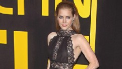 Amy Adams Stuns In a Risque Lace Gown