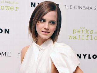 Photos: Emma Watson's Chest-Baring Dress