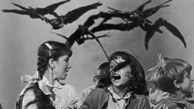 PHOTO: A group of schoolchildren flail about in terror in a publicity still for Alfred Hitchcocks classic film The Birds, circa 1963.