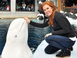 Photos: Celebrity Round-Up: Isla Fisher's New Whale Friend