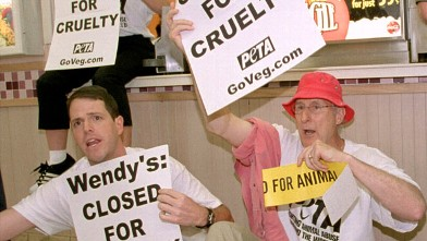 PHOTO: Actor James Cromwell, right, protests with animal rights activists Lisa Lange, far left, and Jay Kell July 3, 2001 during a demonstration by People for the Ethical Treatment of Animals (PETA) at a Wendy''s restaurant in Tysons Corner, VA.