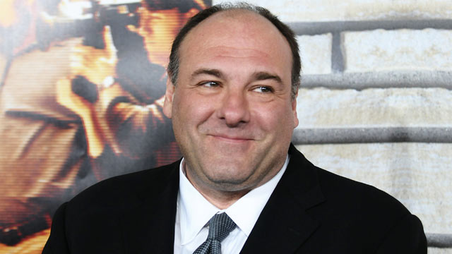 "PHOTO: James Gandolfini attends the premiere of ""Ci"