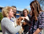 PHOTO: Britains Catherine, Duchess of Cambridge, right, meets the school dog Henry as she arrives to visit The Willows Primary School in Wythenshawe, Manchester, England, April 23, 2013.