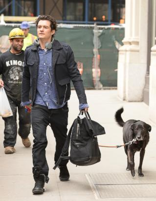Meet Orlando Bloom's Pooch, Sidi