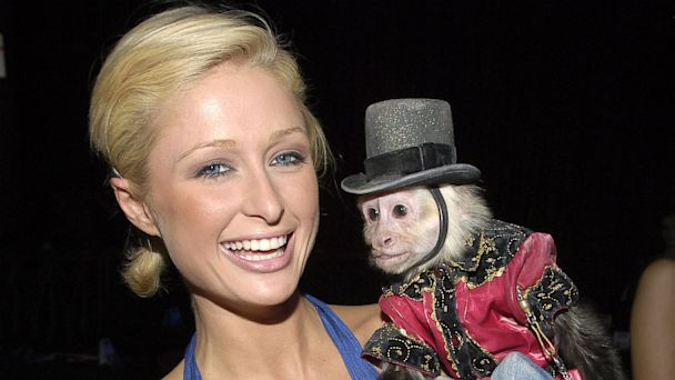 PHOTO: Paris Hilton and monkey