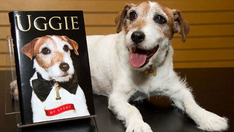 gty uggie the dog thg 130619 wblog Photos: 7 of the Biggest Celebrity Pets Around