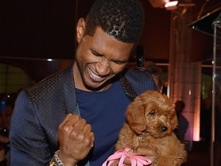 Photos: Usher Bids $12K for Puppy