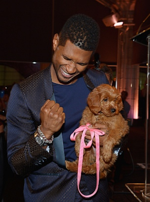 Usher Outbids for Puppy at Charity Auction