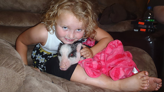 PHOTO: Honey Boo Boo and pet pig