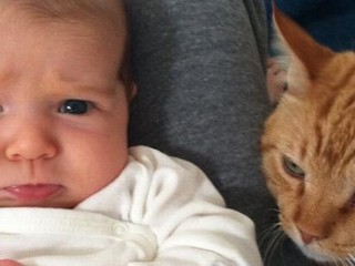 Photos: Hannigan's Baby Girl: Not a Cat Person?