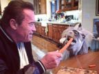 Arnold Schwarzenegger Shares His Breakfast with Whiskey