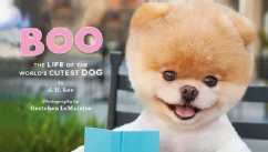 PHOTO: Famous dog BOo has a book out called,