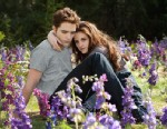 PHOTO: Robert Pattinson and Kristen Stewart star in The Twighlight Saga: Breaking Dawn Part 2.