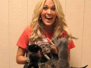 Photos: Carrie Cuddles with Kittens