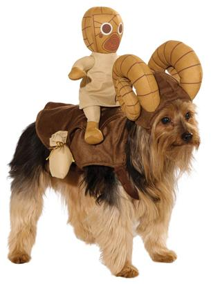 Dress Your Dog Like A Star Wars Animal