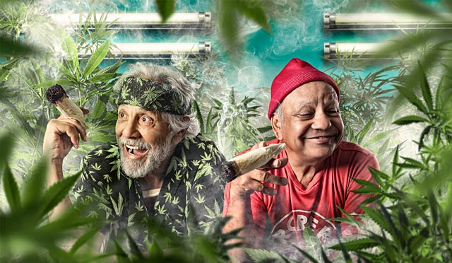 ht cheech and chong ll 130815 wblog 15 Minutes and Fame: Paul Mobleys Dazzling Celebrity Portraits