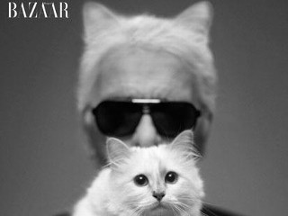 Photos: Karl Lagerfield's Pampered Pet