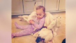 So Cute! Jack Osbourne's Daughter Cuddles With Their Pup