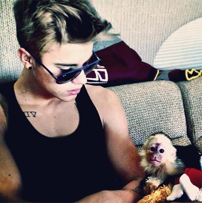 Bieber and His Pet Monkey