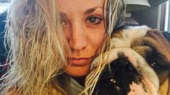 Kaley Cuoco Snaps Photo With Her Bulldog