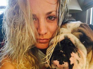 Kaley Cuoco Snaps Photo With Her Bulldog