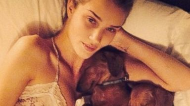 Rosie Huntington-Whiteley Snuggles With Her Daschunds