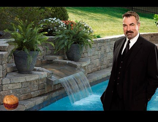 Tom Selleck Waterfall Sandwiches