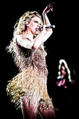 Taylor Swift's Eye-Popping Tour Dresses