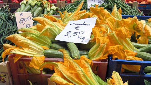 PHOTO: Zucchini flowers