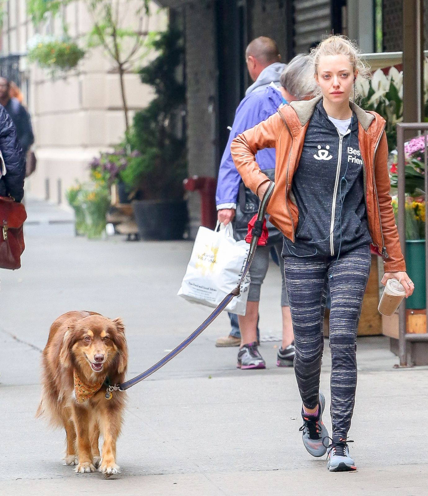 amanda seyfried steps out with her pup picture