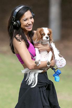 Meet Naya Rivera's Dog Lucy