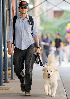 Ryan Gosling's Day With His Dog