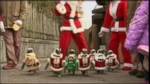 VIDEO: Penguins Dressed Up as Santa Claus