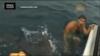 VIDEO: Shark Attack Near Miss Caught on Camera