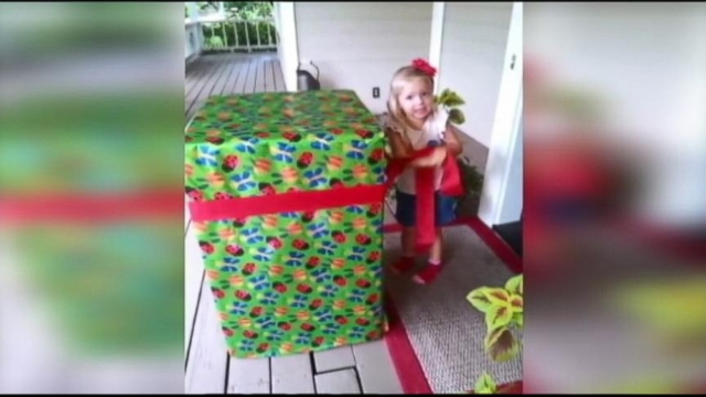 VIDEO: Soldier Dad Surprises Daughter in Birthday Box