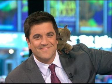 Watch: 'GMA' Bids Farewell to Josh Elliott