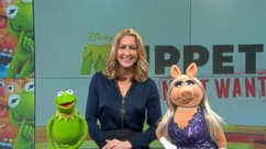 VIDEO: GMA 3/14: Something Is Not Quite Right With Kermit on GMA