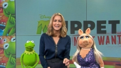 VIDEO: Something Is Not Quite Right With Kermit on 'GMA'