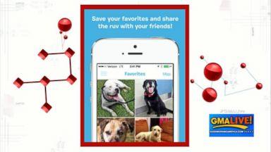 Gma dating app