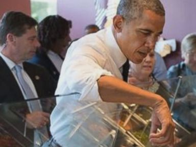 Obama's Chipotle Moment a Case of 'Presidential Overreach'