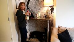 VIDEO: Ginger Zee Gets a Flea Market Fabulous Apartment Makeover