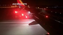VIDEO: Birds Force Southwest Airlines Plane to Make Emergency Landing