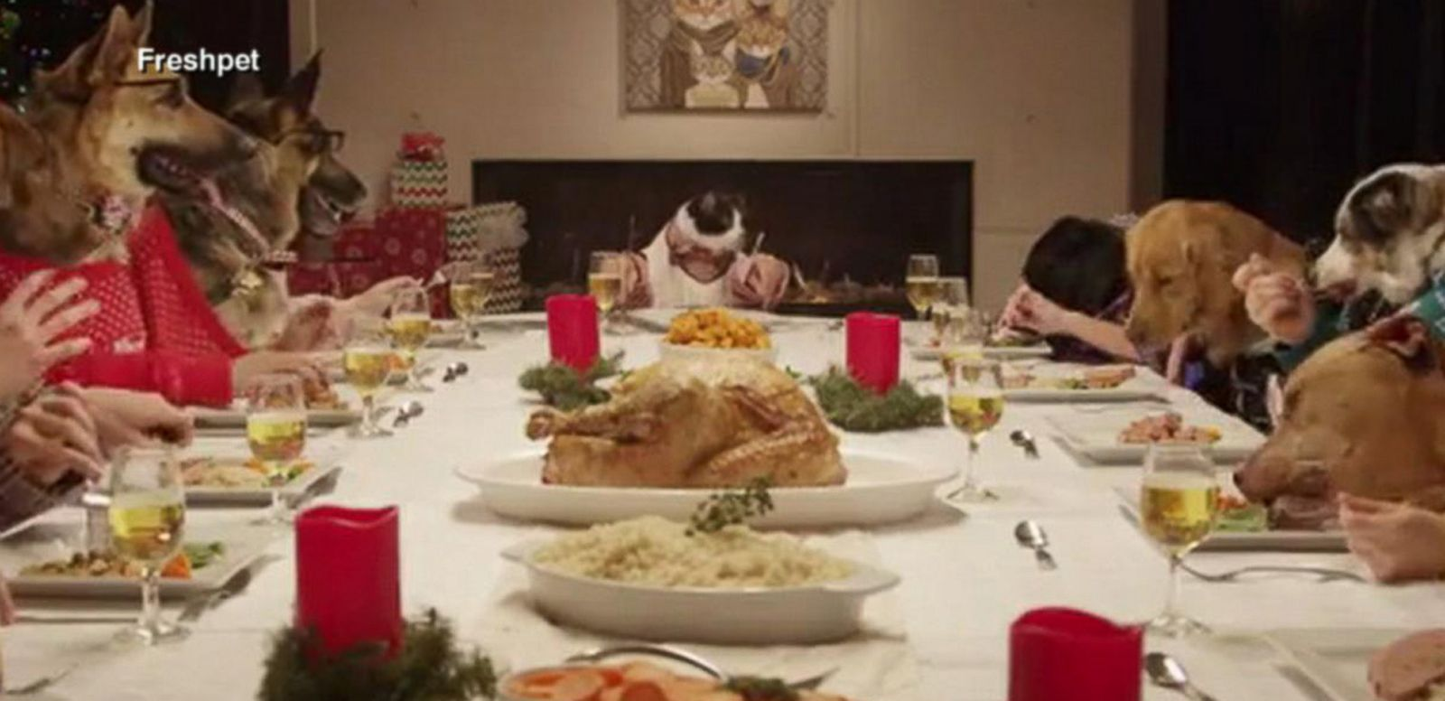 VIDEO: Pets Eat Christmas Dinner Together in Hilarious, Cute Humane Society Ad