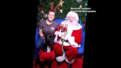 VIDEO: Doggies Take Pictures With Santa That Are Sure to Be Instant Classics