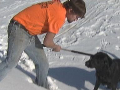 VIDEO: A dogs barks notified workers to another dog that had fallen through ice into freezing cold water.