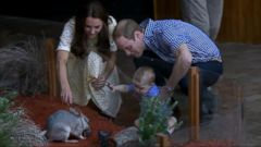 VIDEO: Prince William Very Involved in Childrens Lives