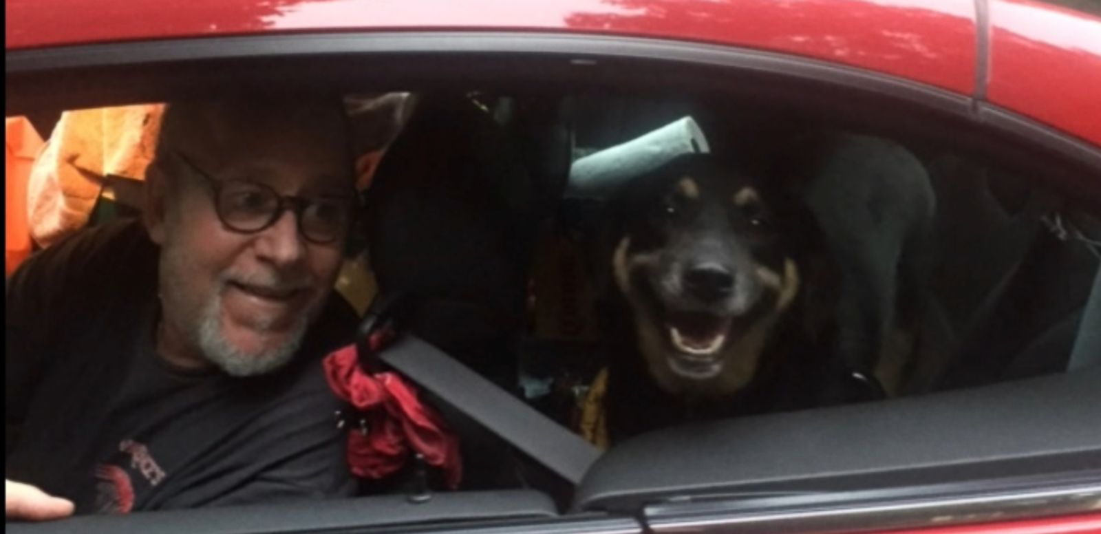 VIDEO: People from around the country applied to adopt the German Shepard mix after a photo of the dog chasing a pickup truck in Louisiana went viral.