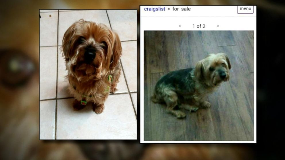 Craigslist Scam Allows Thieves to Get Away With Selling ...