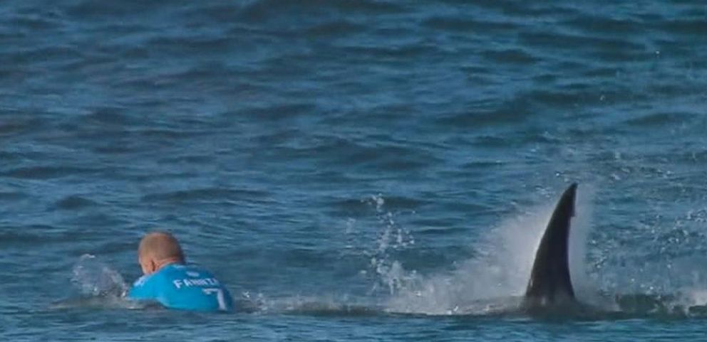 VIDEO: New Video of Surfer Mick Fanning's Great White Shark Attack